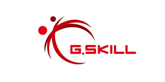 G-SKILL-04