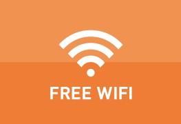 إنترنت مجاني بمحافظة الإسكندرية