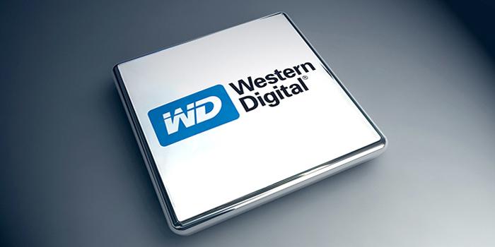 Western-digital-SANDISK-03