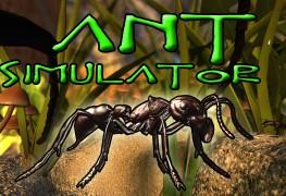 بدلاً من إنفاق مال الدعم لتطوير Ant Simulator أنفقوها على الخمور