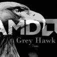 معالجات AMD Grey Hawk APU