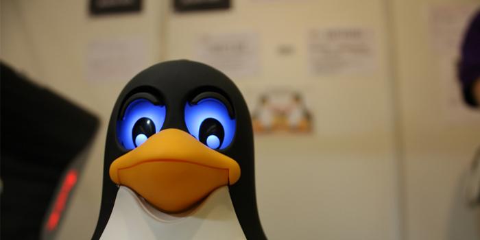 مايكروسوفت تجبر مصعني المحمول على منع استخدام نظام لينكس