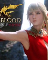 Bloodstorm Expansion