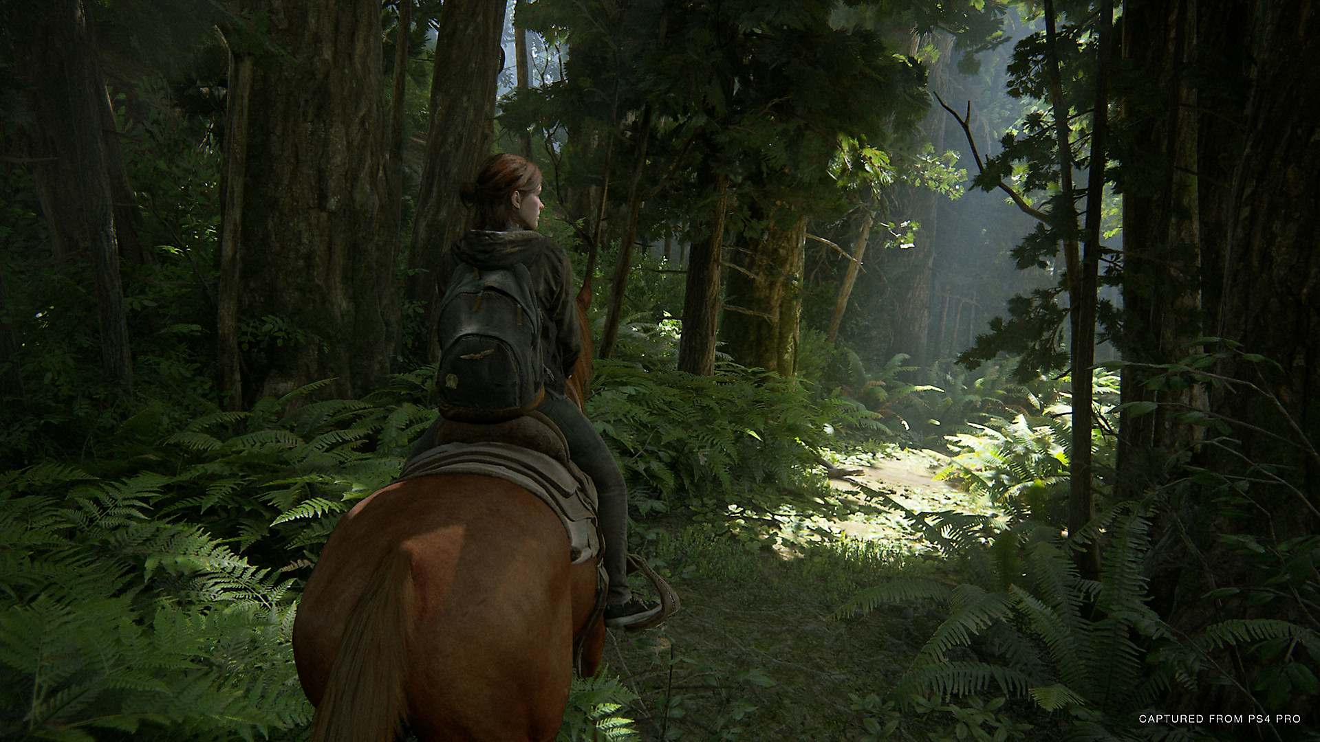 The Last of Us 2 فيروس كورونا