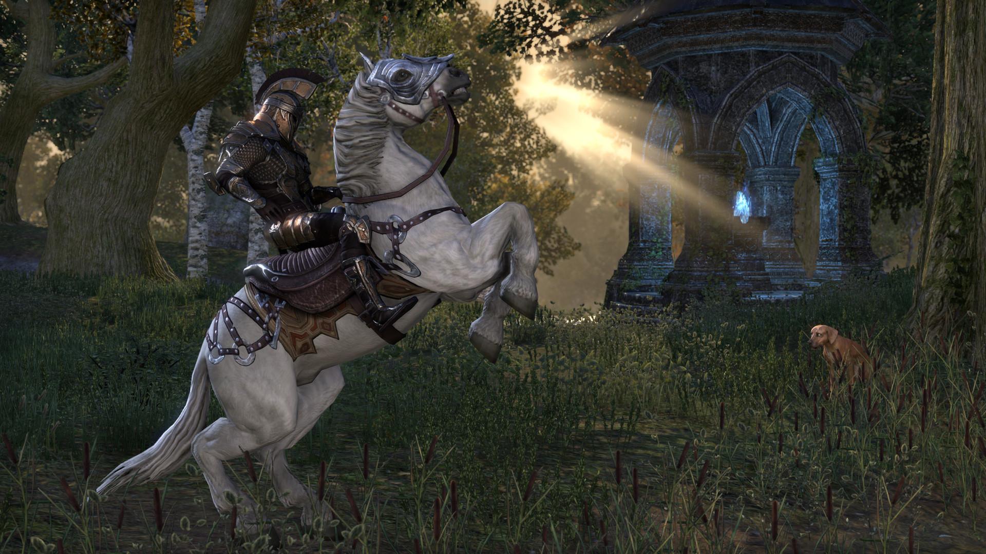 Elder Scrolls Online ZeniMax Online محرك AAA