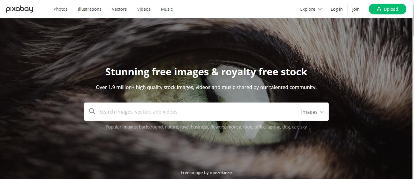 مواقع صور مجانية