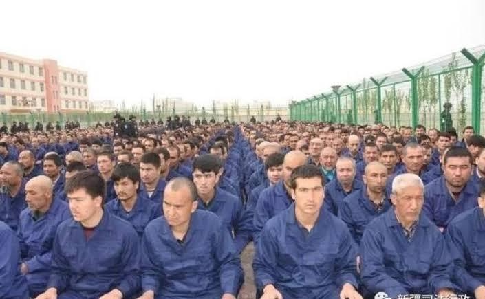 عمالة قسرية - مسلمي الأويغور